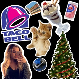 7 favorite things - kelsi