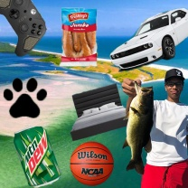 DS_Seven favorite things